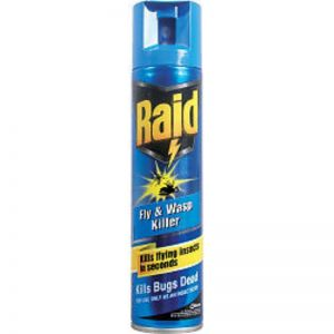 Raid Fly & Wasp Killer, 300ml